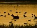 2008-08-25-063-jpg